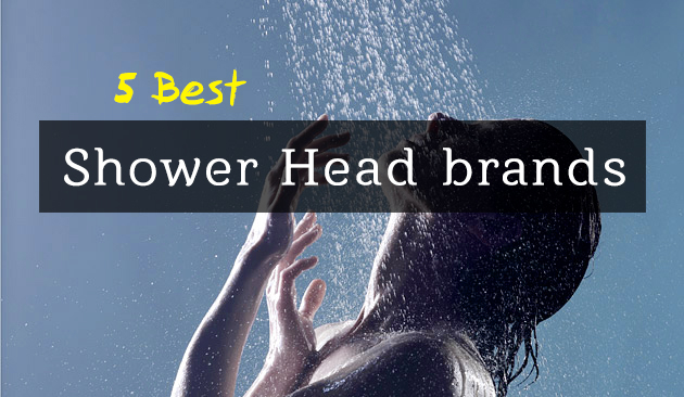 Best Shower Head brands